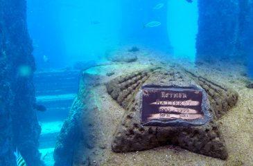 Cementerio Submarino,  Creando Vida… Después de la Vida